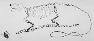Mantell's Iguanodon Sketch