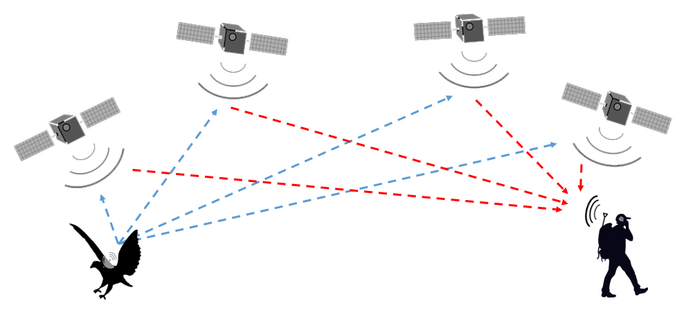 diagram of satellite tags