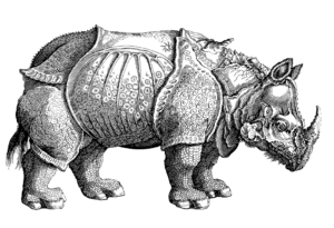 A line drawing of a rough looking rhinocerous