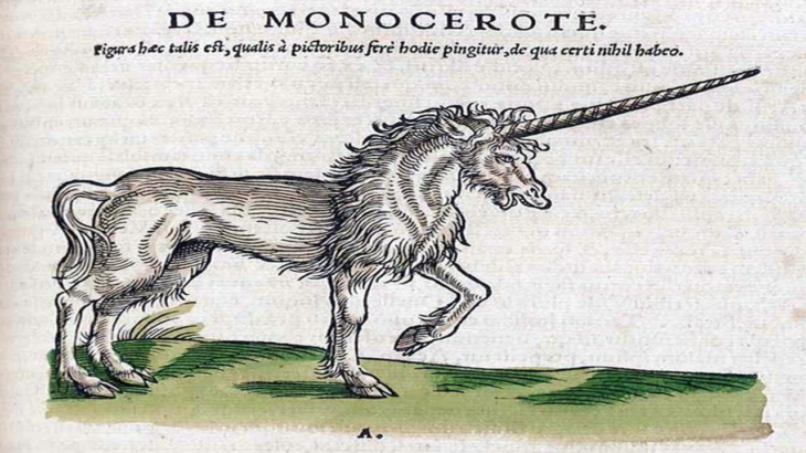 A line drawing of a unicorn